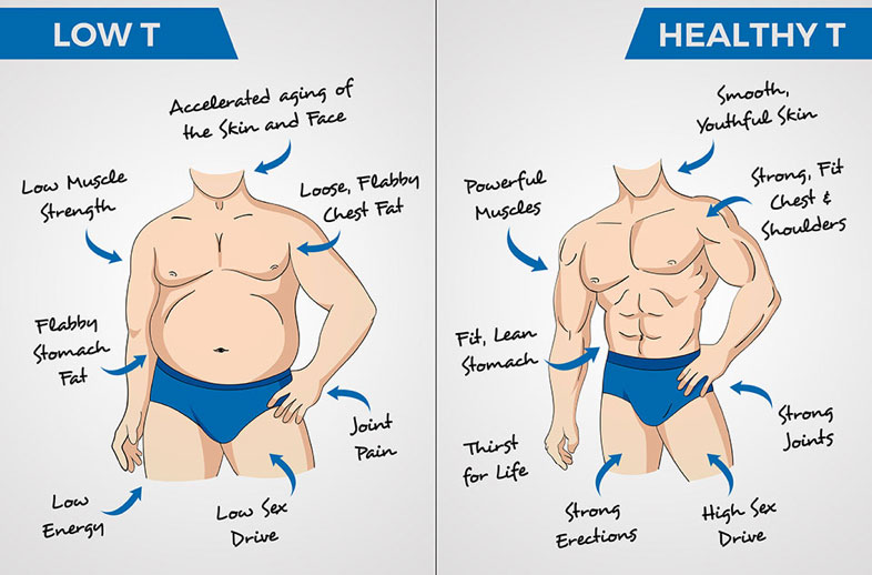Low T and Healthy T Diagram