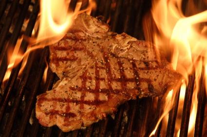 vegetarian vs meat eating