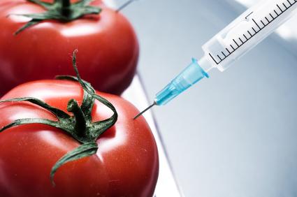 Top GMO Foods