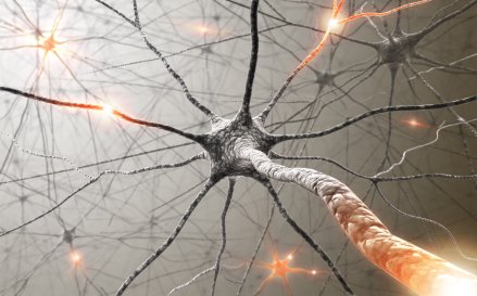 The amino acid acetyl-L-carnitine relieves pain from neuropathy.
