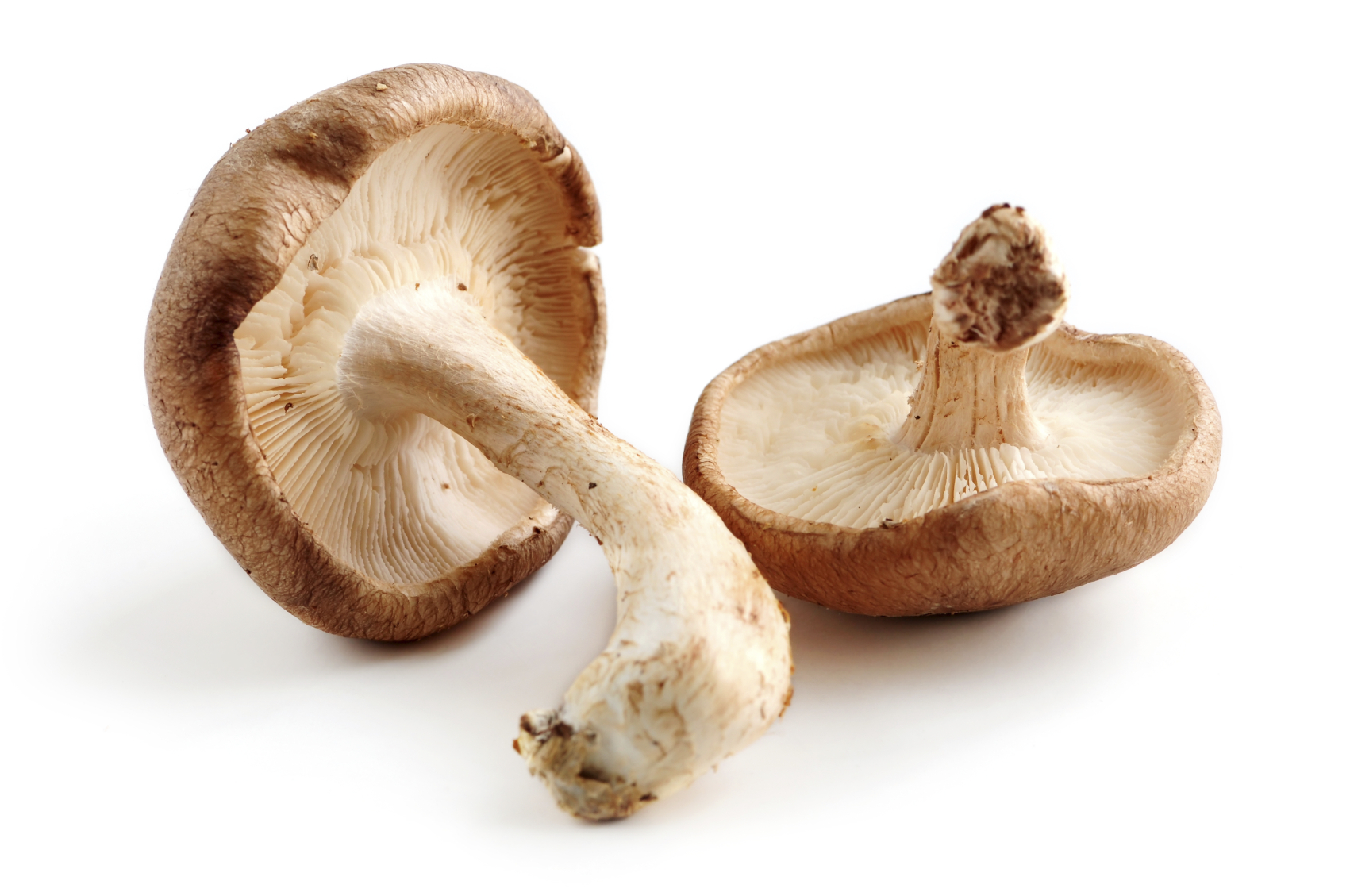 Shiitake mushrooms contain a powerful compound that may help prevent cervical cancer.