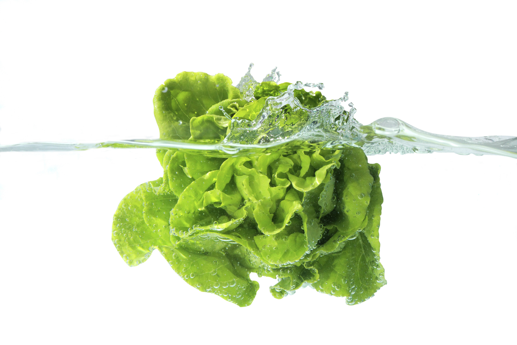 Packaged greens save time and effort. But they may be hiding a vile secret that might put your health at risk.