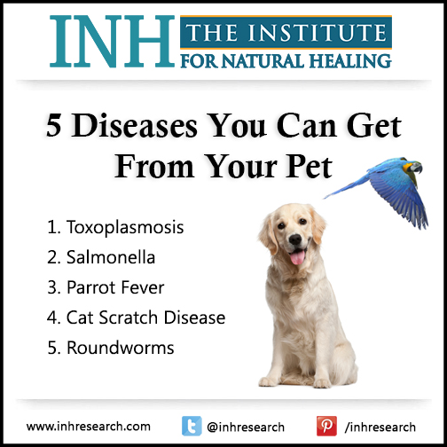 Bonding with your pets lowers stress and fights obesity… But it comes with risks. Here are 5 bugs you can catch from your pet and how to avoid them.