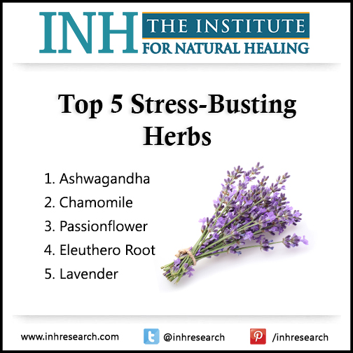Discover five safe, stress-busting herbal remedies.