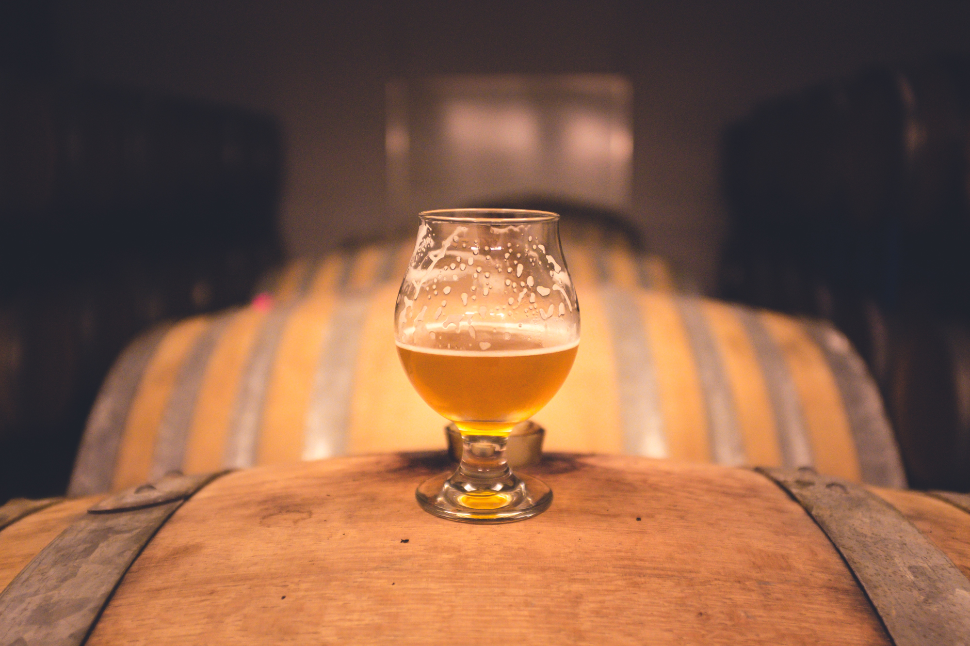 Xanthohumol, a substance found in hops used to brew beer, has a wide range of health benefits, according to a new study.
