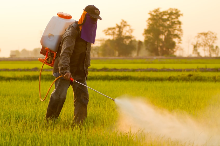 A new EPA report finds that the weed killer atrazine is in 94% of the nation's drinking water. Atrazine is linked to cancer and birth defects.