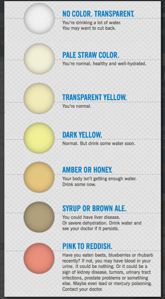 The color of urine can indicate a wide variety of health problems.
