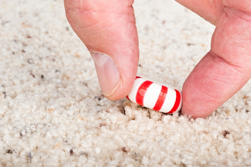 """Is food safe to eat after it falls on the floor? Rutgers University researchers put the """"5-second rule"""" to the test. Here's what they found…"""