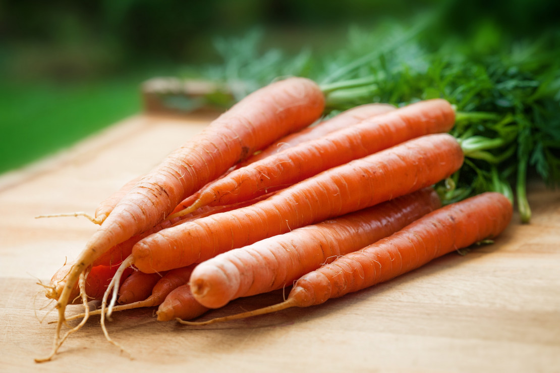 carrots-bloat