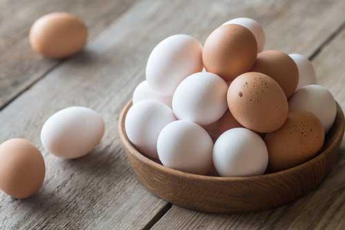 Farm to Egg