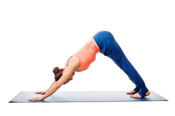 Cane in discesa &quot;width =&quot; 350 &quot;height =&quot; 233 &quot;/&gt;</p><ol><li>Mettiti sulle mani e sulle ginocchia Allinea le ginocchia dritte al di sotto dei fianchi Posizionare le mani un po &#39;in avanti rispetto alle spalle con gli indici paralleli</li><li>Espirate mentre sollevate le ginocchia dal pavimento, sollevate il bacino verso il soffitto e raddrizzate lentamente le gambe. Blocca le tue ginocchia, porta il tuo corpo nella forma di una freccia, come una A maiuscola (vedi foto sopra)</li><li>Premi verso il basso con la stessa forza con i palmi e i talloni. Regola le braccia in modo che le tue braccia interiori facciano fronte ai pollici</li><li>Disegna il petto verso le cosce, che allunga la colonna vertebrale.</li><li>Allinea le orecchie con le braccia. ma non lasciarlo penzolare.Fissa il tuo sguardo tra le tue gambe.</li><li>Mantieni la posa per almeno cinque respiri lenti. 100 respiri.</li><li>Termina espirando e abbassando delicatamente le ginocchia a terra</li></ol><p>Ripeti finché non hai fatto la posa per almeno 15 minuti.</p><div style=