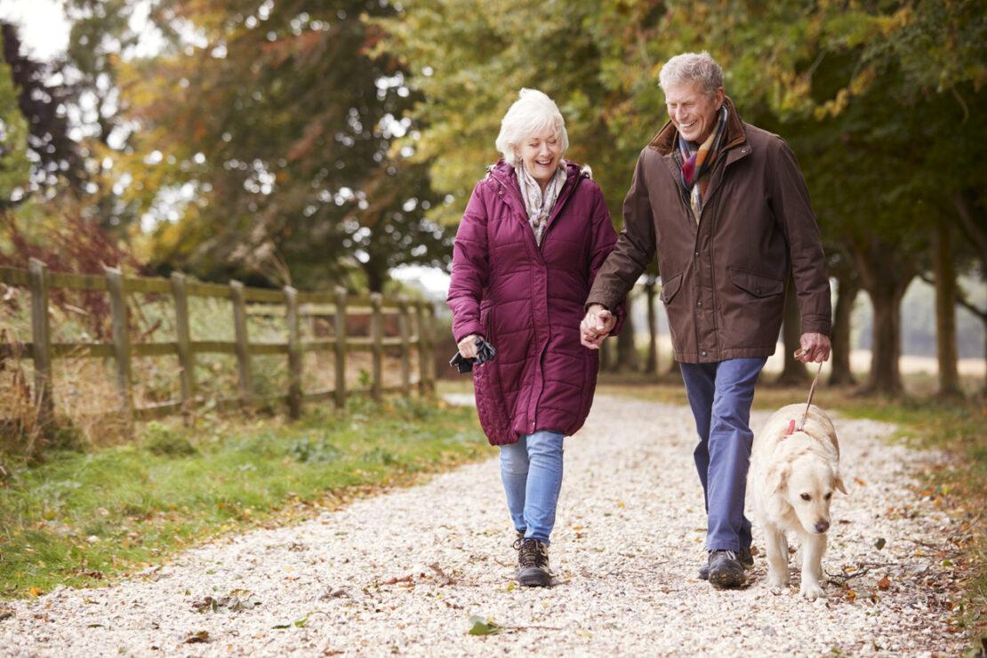 Photo of couple walking dog.