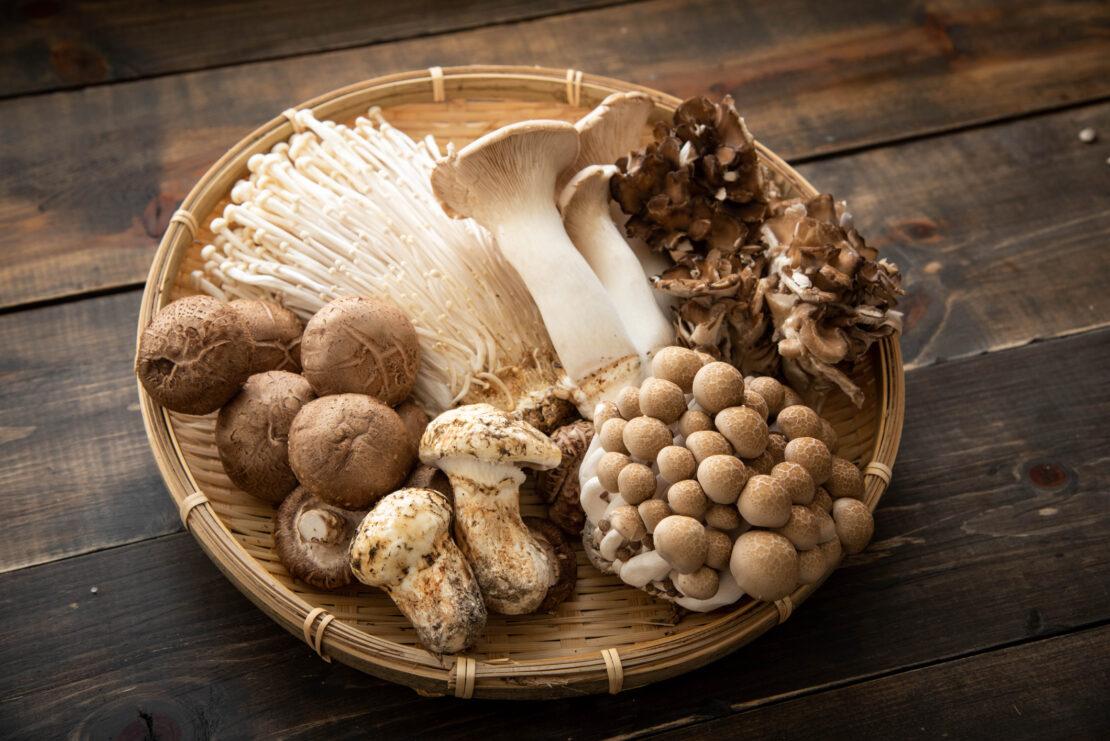 Picture of mushrooms.